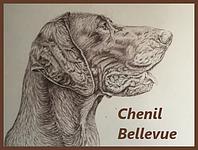 Chenil Bellevue
